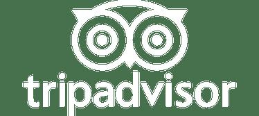 Tripadvisor Logo min